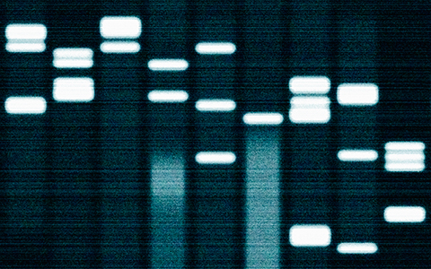 Diagnostics and Next-Generation Genetic Sequencing