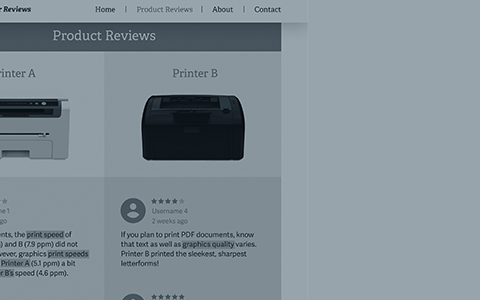 How Data Scientists Can Leverage Online Reviews in IP and Antitrust Disputes